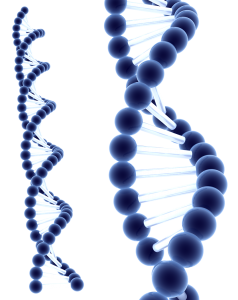 blue_dna_by_reby_c-d3ia7s9