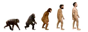 Does Rejecting Evolution Mean Rejecting Science?