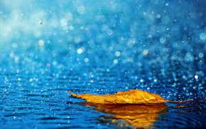 "Every year, the amount of water that evaporates and that falls back to the Earth in the form of rain is ""constant"": 513 trillion tons."