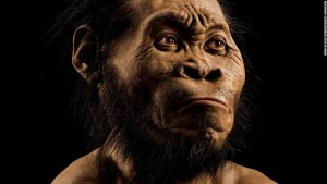 The Homo naledi hand is totally different to the human hand. Its curved finger bones and other ape-like features show that it belongs to an ape that leapt from branch to branch.