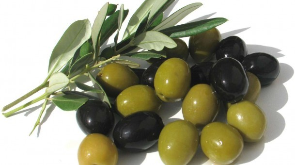 The Olive: A Source of Good Health (Part 1 / 2)
