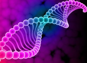 Gender and the 23th Chromosome Pair