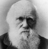 Darwinism Refuted (Special Folder)