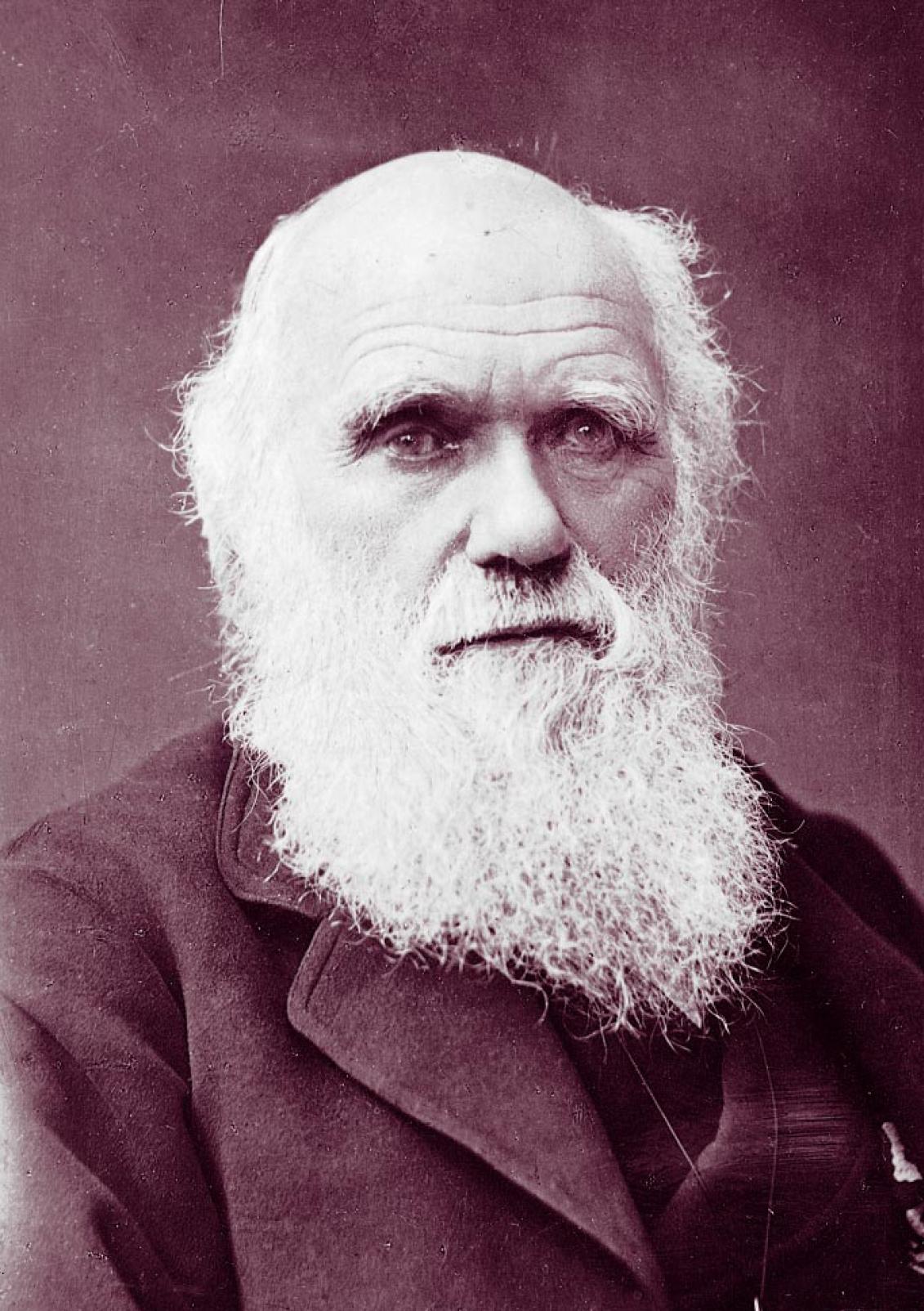 darwinism