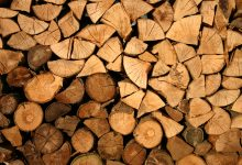 Wood and Fire: Can They Be Obtained Artificially?