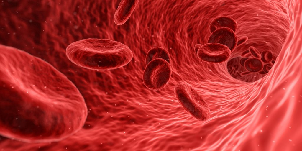 The Color Of Blood Red Blood Cells The Color Of Blood Red Blood Cells