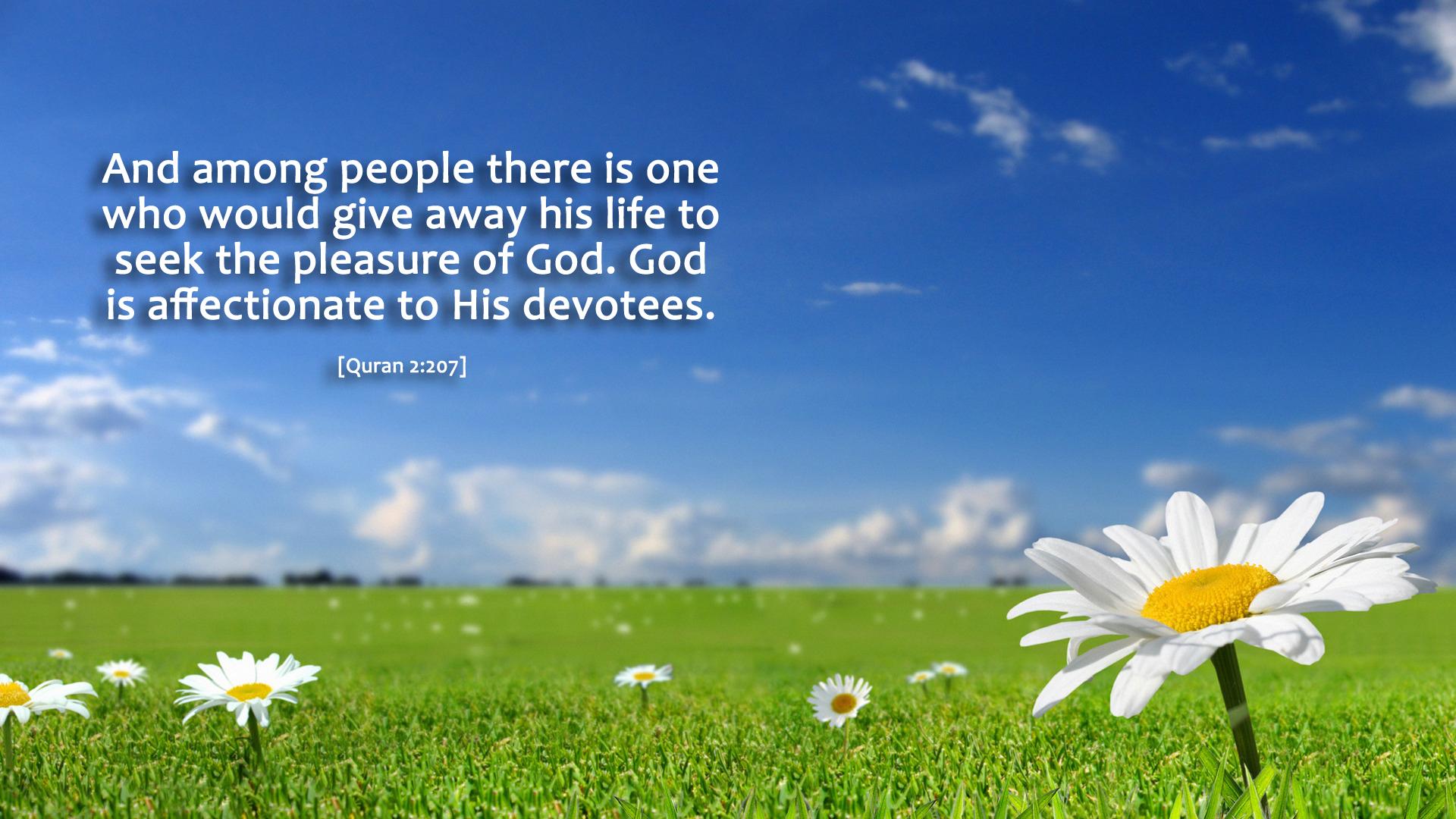 pleasure of god